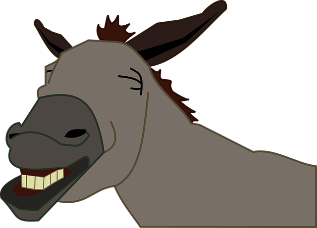 burro-1295788_640